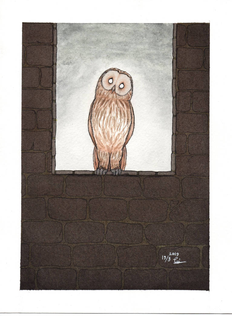 Aussucht / The Dream Owl. A gift from SilverStar309