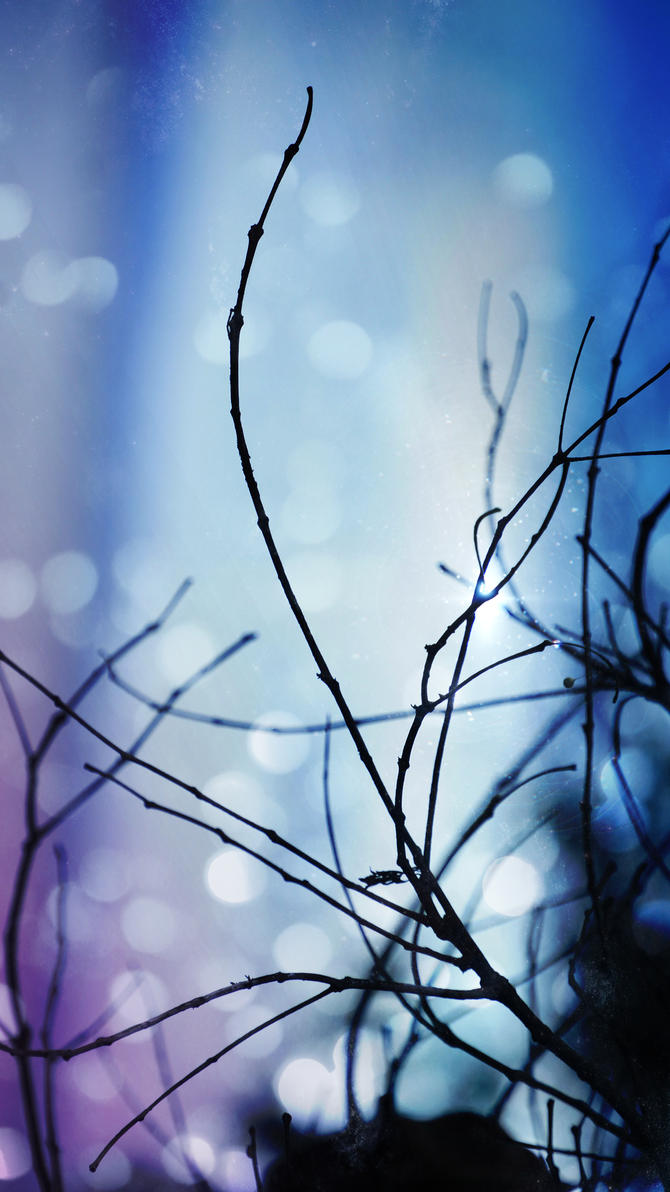 Light Effects In Branch by manuelo-pro
