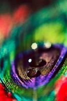 Rainbow Drop by Spademm