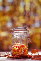 Autumn Treat by Spademm
