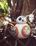 BB-8 on Adventure by Khallandra