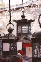 Nara 2 by LunaFeles