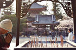 Chion-in Temple in Kyoto
