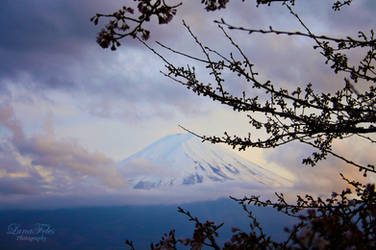 dream of another time - Fuji 3 by LunaFeles
