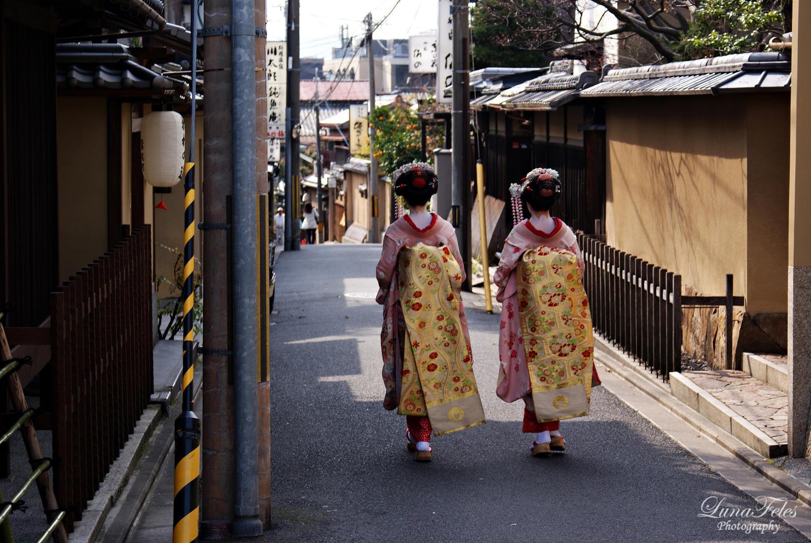Japan 09 by LunaFeles