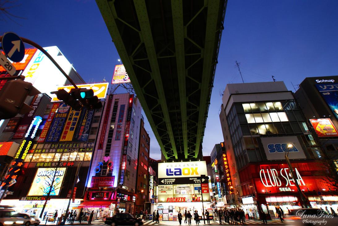 Tokyo at night by LunaFeles