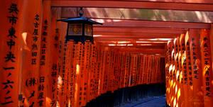 Fushimi Inari 02