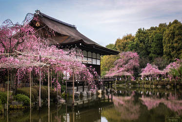 Garden of the Heian-Shrine 02 by LunaFeles