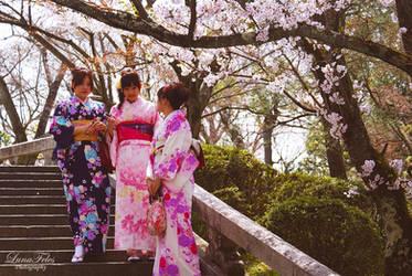 Kimono and Sakura by LunaFeles