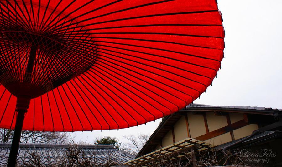 Ryoan-ji by LunaFeles