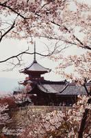 Kiyomizu-dera 02