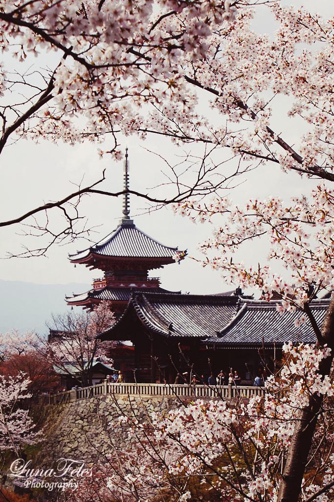 Kiyomizu-dera 02 by LunaFeles