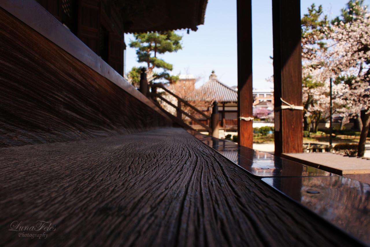Kyoto 6 by LunaFeles