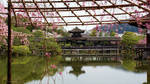 Garden of the Heian-Shrine 03
