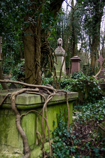 Highgate Cementary 2 by LunaFeles