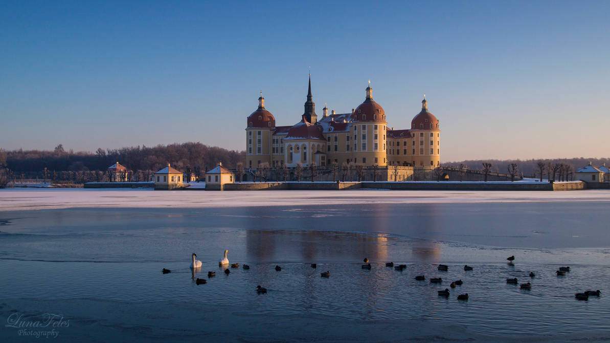 Moritzburg this morning