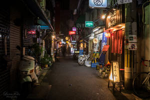 streets of Osaka at night by LunaFeles
