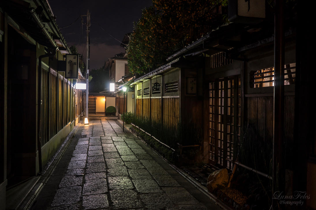 Kyoto at night by LunaFeles