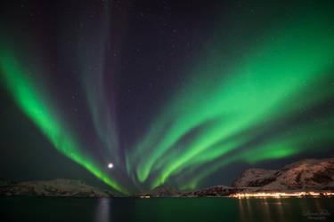 Northern lights over Skulsfjord by LunaFeles