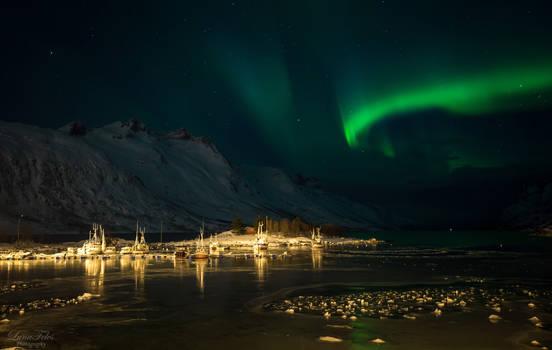 Aurora Borealis over Ersfjordbotn