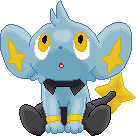 Shinx - Sheinux by XxAmyxXx