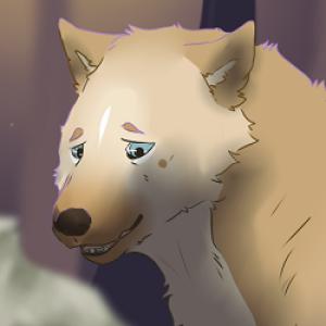 Sukkol's Profile Picture