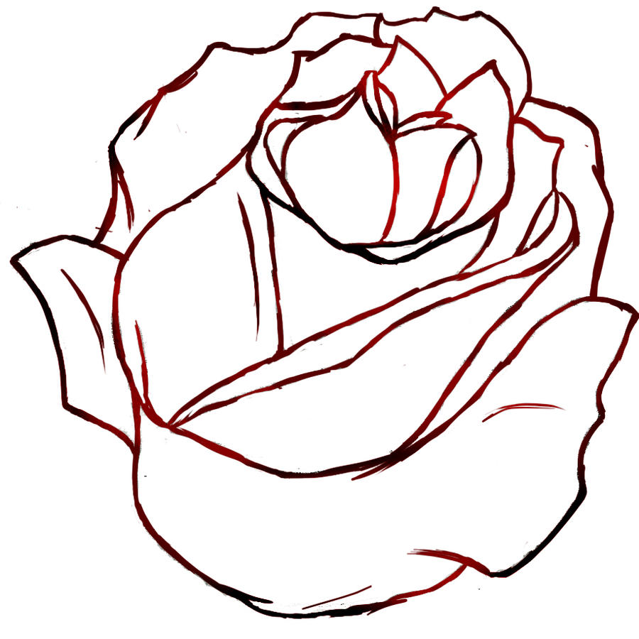 Out Line Drawing Flowers : Red rose outline by izzyfox on deviantart