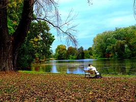 bench by the water by HeretyczkaA