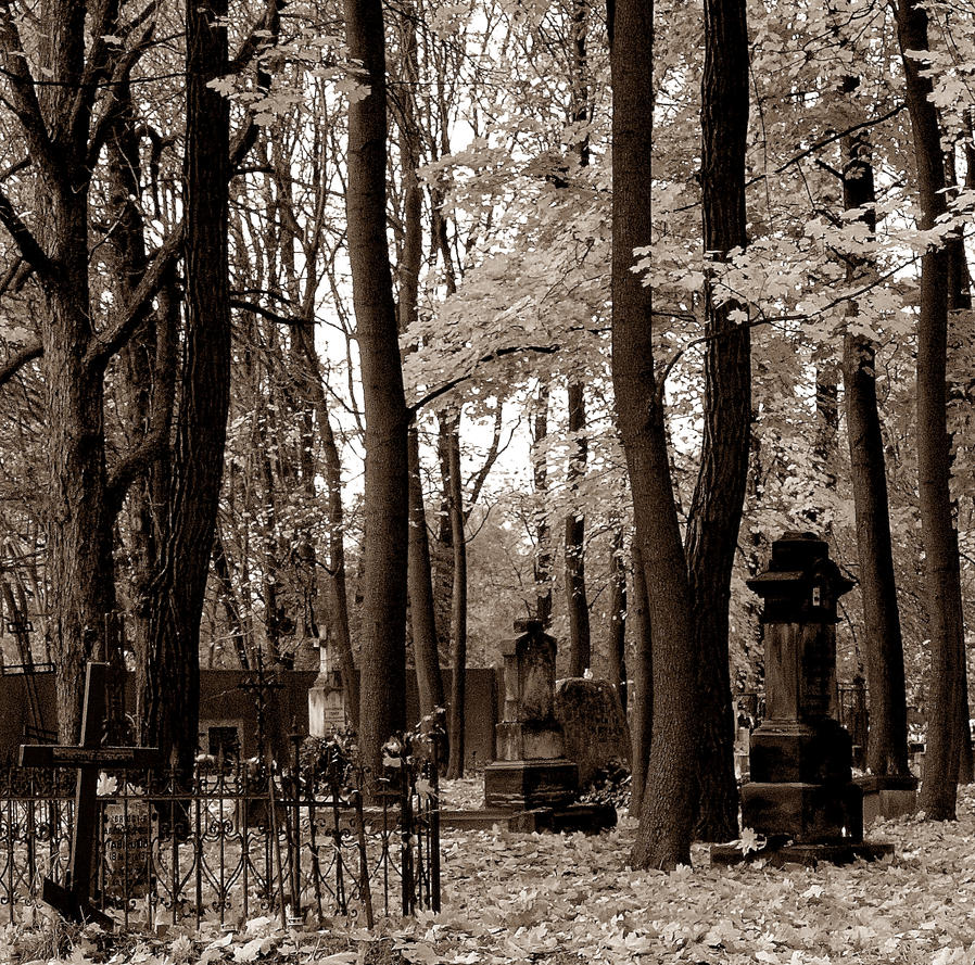 forgotten graves by HeretyczkaA