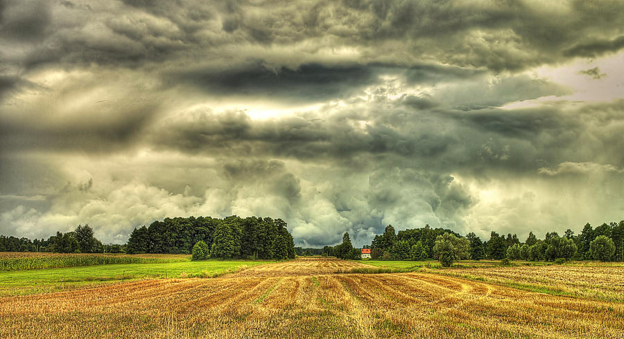 field by HeretyczkaA