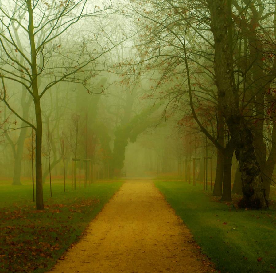 late autumn by HeretyczkaA