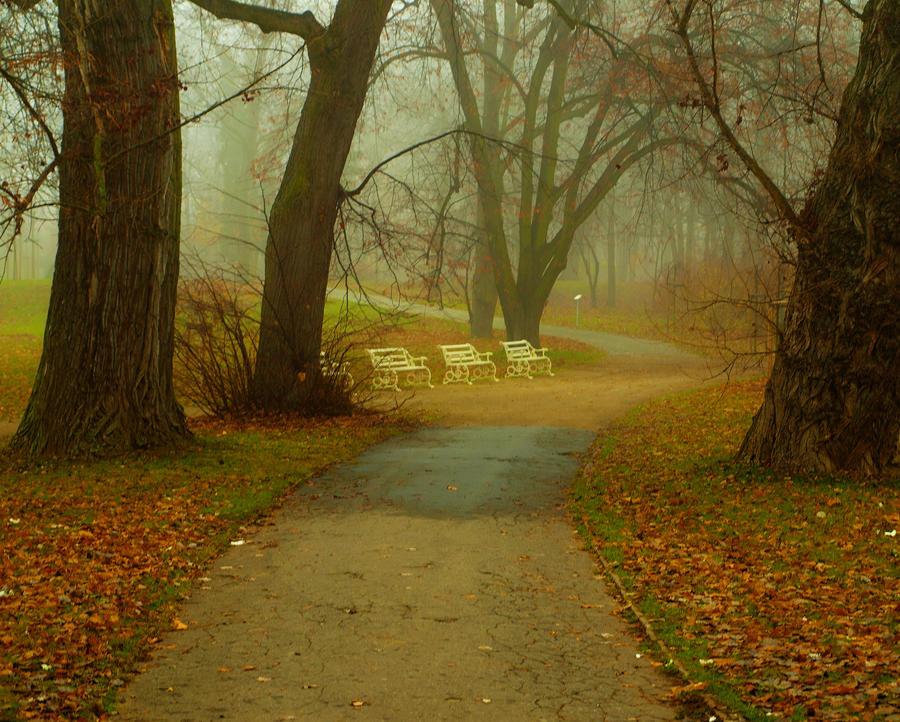 late autumn. by HeretyczkaA