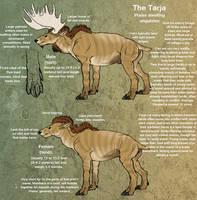 Tarja species ref by Da-Lizzard