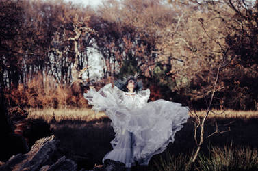 White Autumn by IrinaJoanne