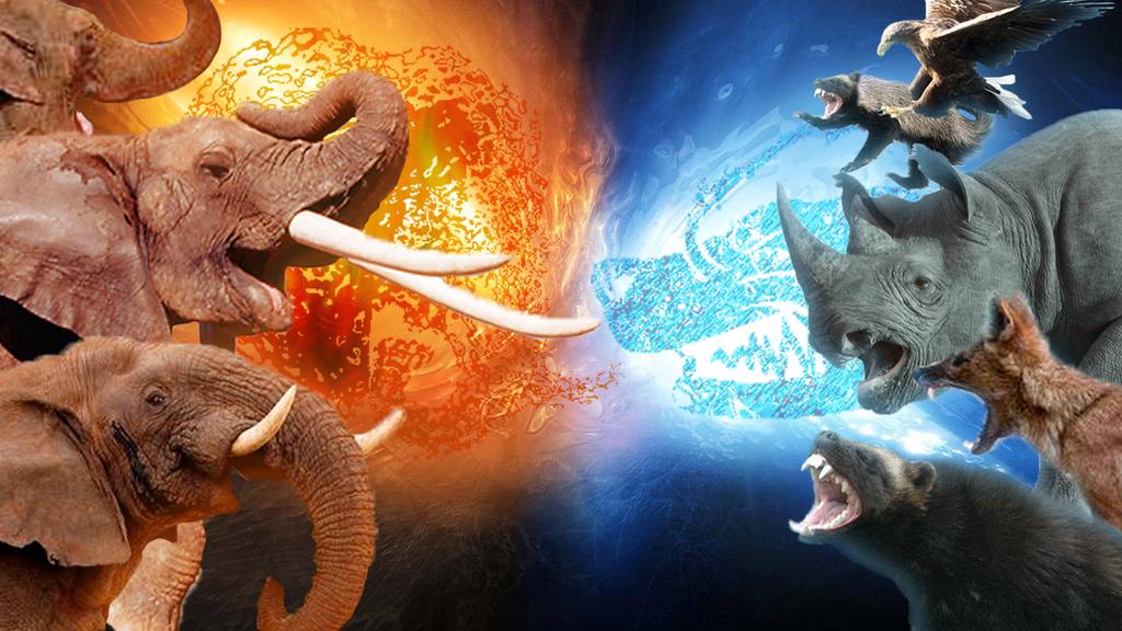 Far Cry 4 Animal Battle By MarioMiyamoto On DeviantArt