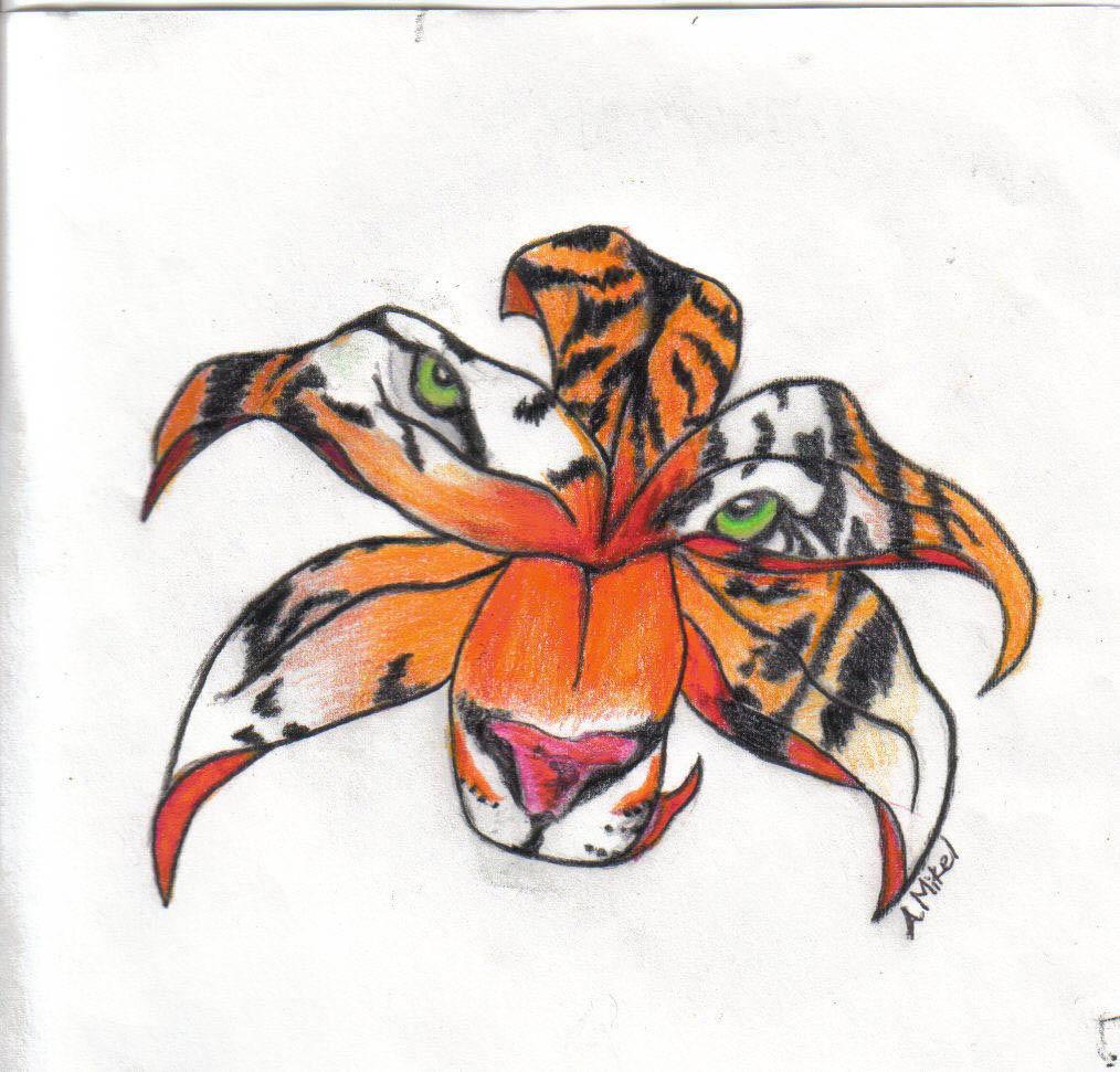 Tiger lily by shasta trinity on deviantart for Tiger lilly tattoos