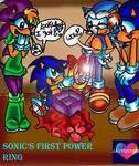 Sonic's birthday present