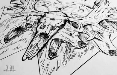 Bloody wolfpack