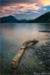 Driftwood by Philippe-Albanel