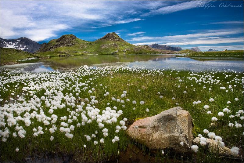 Estaris Lake by Philippe-Albanel