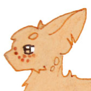 DragonCatSongArt's Profile Picture