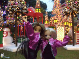 Holiday light up by iwahoshi