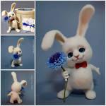 Rabbit wool. Toy
