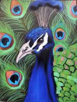 Proud as a Peacock by Lightninglizard