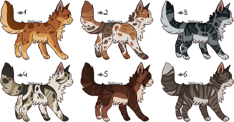 .:Open Cat Adopts 2/6 #5:. by Bright-Pixel-Adopts