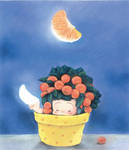 oranger moon