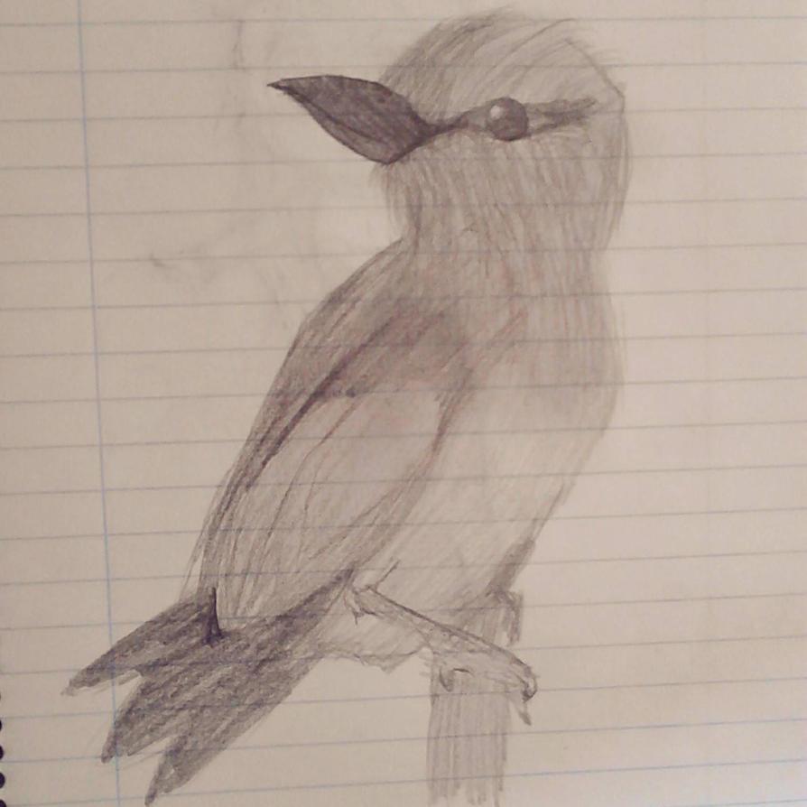 Bird by Nite3007