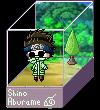 Shino Aburame Box by Senpai-Hero
