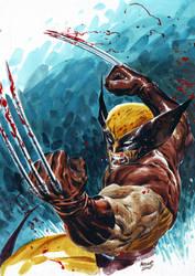 Wolverine 2 by ardian-syaf