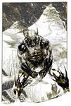Wolverine in Snow Inkwash